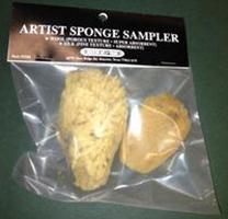 Artist Sponge Sampler