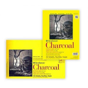 Strathmore 300 Series Charcoal