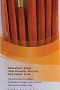 Princeton Bristle set of 7 brushes